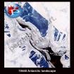 10445 Antarctic Landscape
