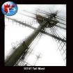 10747 Tall Mast