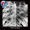 10868 Leaf Study
