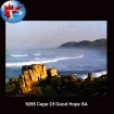 9295 Cape of good hope