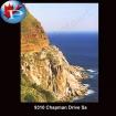 9310 Chapman drive