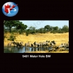 9401 Water Hole