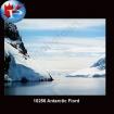 10256 Antarctic Fiord