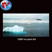 10267 Ice Pack