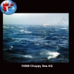 10288 Choppy Sea