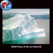10309 Piece of the Ice field