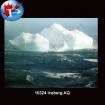 10324 Iceberg