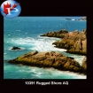 10391 Rugged Shore