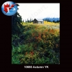 10666 Autumn Yukon
