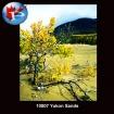 10807 Yukon Sands