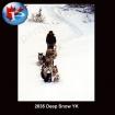 2835 Deep Snow