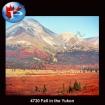 4720 Fall in the Yukon