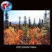 4721 Colorful Yukon