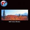 4845 Yukon Wonder
