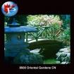 Oriental Gardens CN