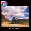 Rail Crossing TAS