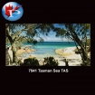 Tasman Sea TAS