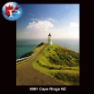 Cape Ringa NZ