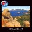 Rugged Shore NZ