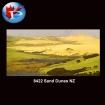 Sand Dunes NZ