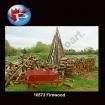 10573 Firewood