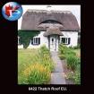 Thatch Roof EU