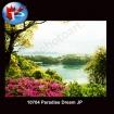 10704 Paradise Dream