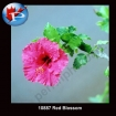 10887 Red Blossom