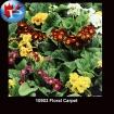 10903 Floral Carpet