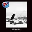 Raven NWT