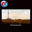 953 Ranching