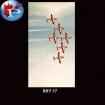 SKY-17 Snow Birds