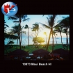 10873 Maui Beach