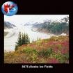 8476 Alaska Icefields