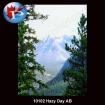 10102 Hazy Day AB