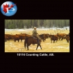 10116 Counting Cattle AB.