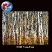 10953 Trees-Trees