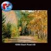 10954 Bush Road AB