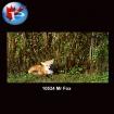10524 Mr.Fox