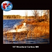 157 Caribou