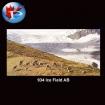 934 Ice Fields